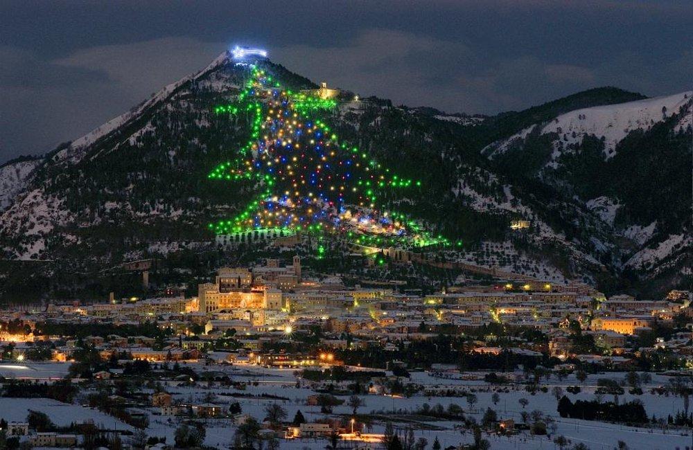 Tante novità nel nuovo sito dell'albero di Natale più grande del Mondo
